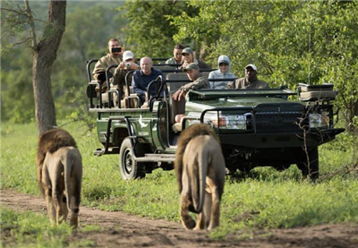 Best safari parks, 9 days. Kenya