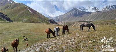 Achik-Tash: trekking, lakes, base camps of Lenin Peak